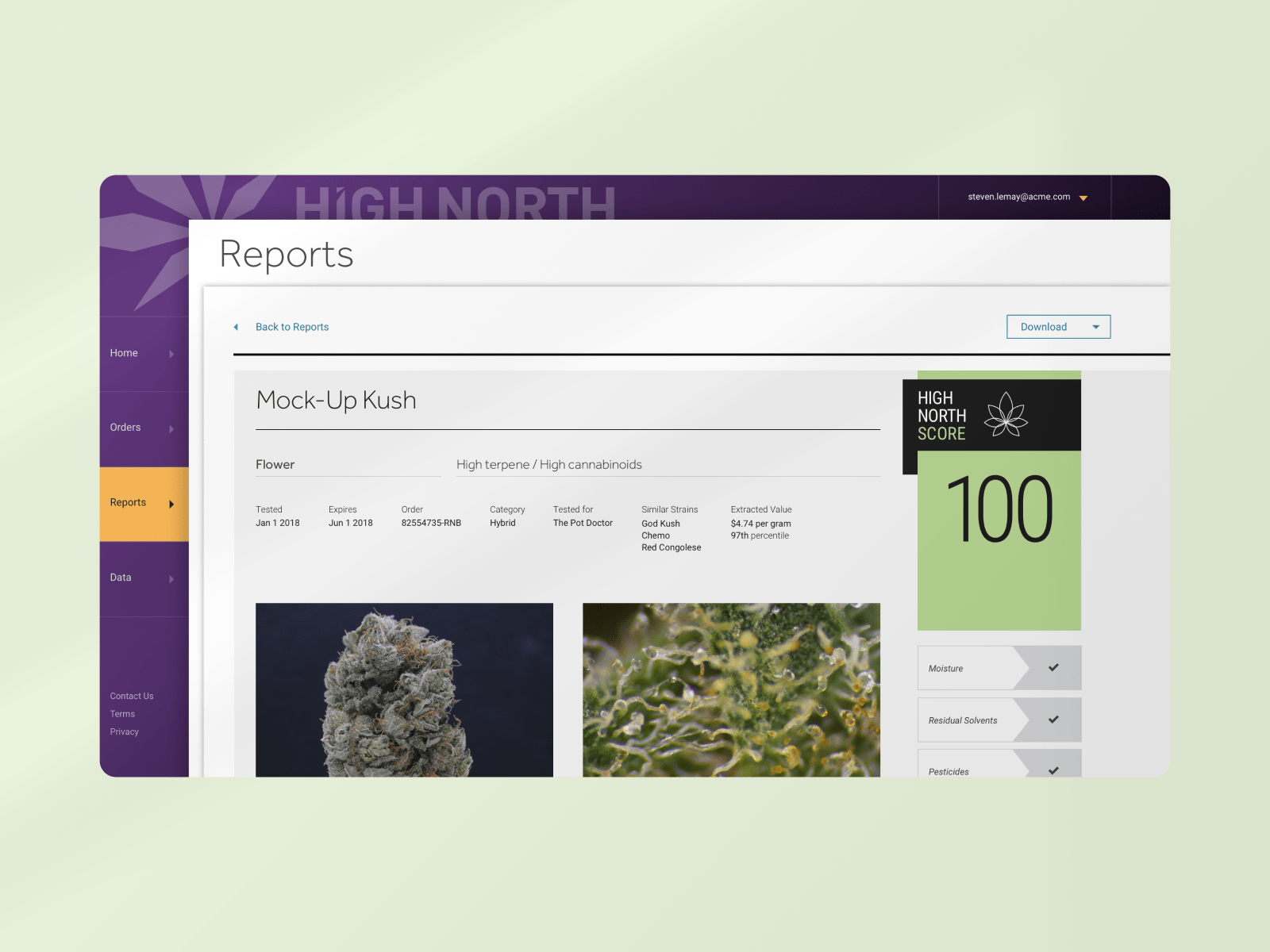 High North sample report webpage